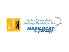 logo-maxilocat
